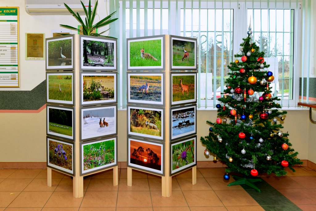 Wystawa moich prac fotograficznych  w Banku Spółdzielczym w Kolnie