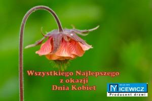 Fot. Sylwester Nicewicz